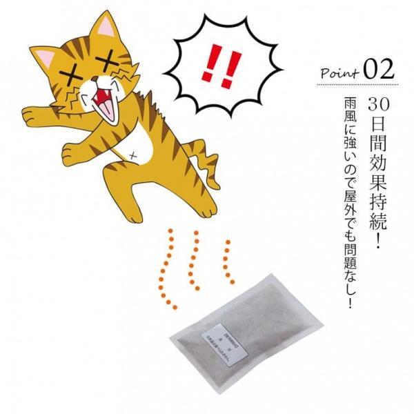 野良猫 撃退 対策 猫よけ キャットおどろく ノラ猫バイバイ! クリスマス ギフト プレゼント 贈り物 e-zakkaya 04