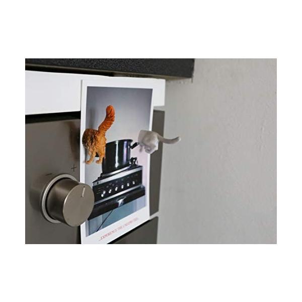 KIKKERLAND Cat Butt Magnets キャットバットマグネット MG53|ea-s-t-store|06