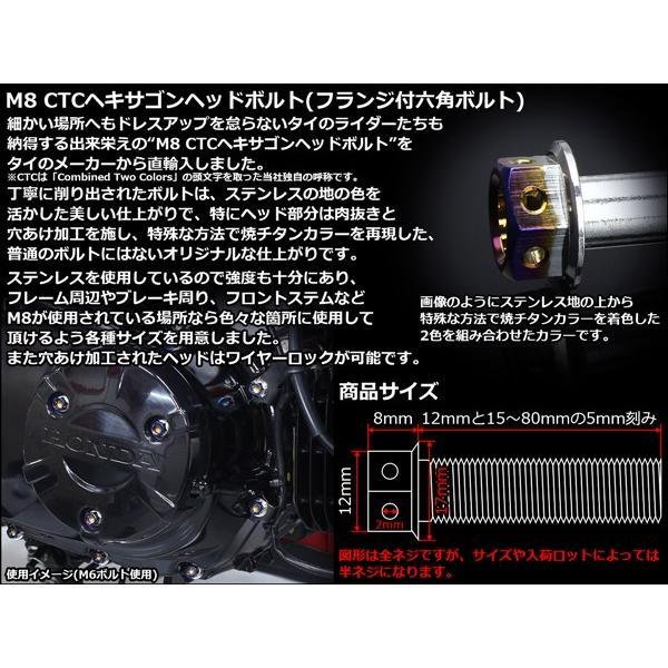 ヘキサゴンヘッドボルト CTC フランジ付六角ボルト M8×30mm ステンレス シルバー/焼チタンカラー|eale|02