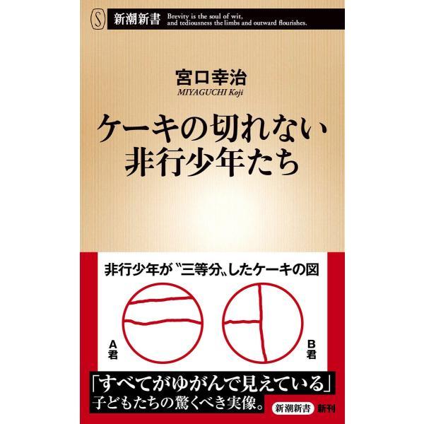 ケーキの切れない非行少年たち(新潮新書) 電子書籍版 / 宮口幸治