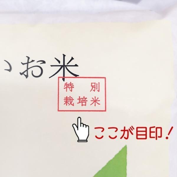 つや姫 10kg - 米 5kg x2袋 山形県産 特別栽培米 特A お米 送料無料 平成30年産|echigo-inahoya|03