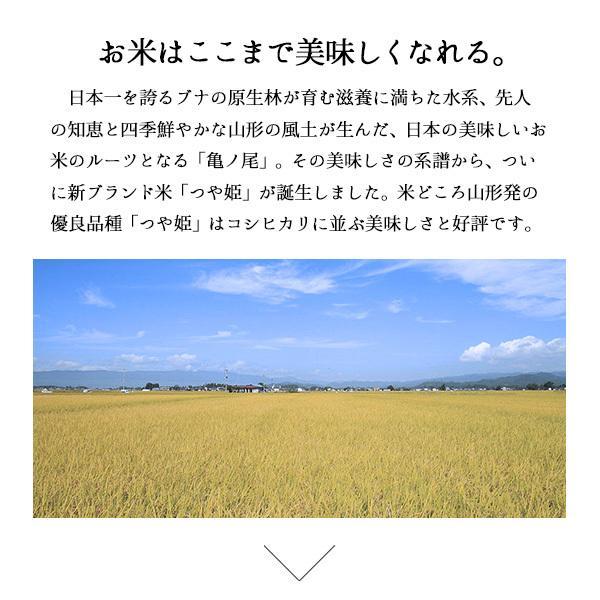 つや姫 10kg - 米 5kg x2袋 山形県産 特別栽培米 特A お米 送料無料 平成30年産|echigo-inahoya|04
