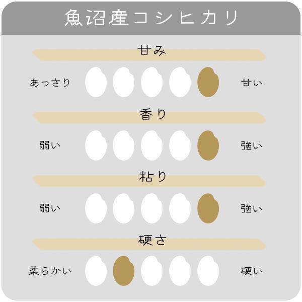 米 お米10kg _魚沼産こしひかり ...