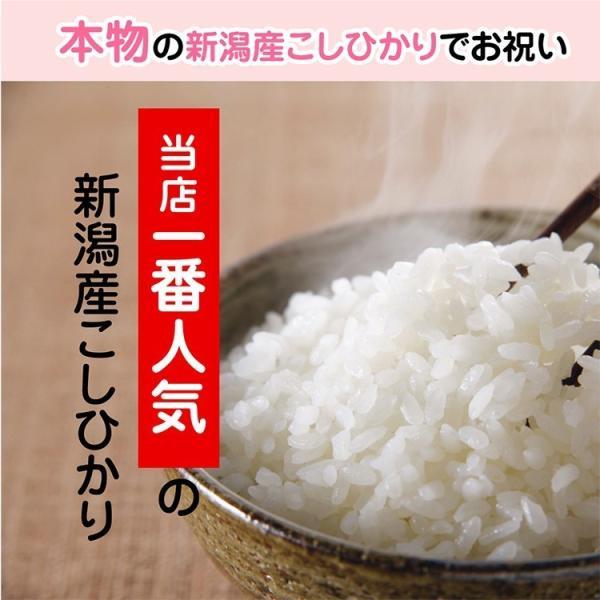 一歳 一升 餅 の代わり 米 新潟産 コシヒカリ 1升米 1.5kg 1 歳 一生|echigo-komesho|08