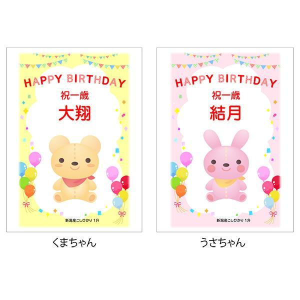 一歳 一升 餅 の代わり 米 新潟産 コシヒカリ 1升米 1.5kg 1 歳 一生|echigo-komesho|09
