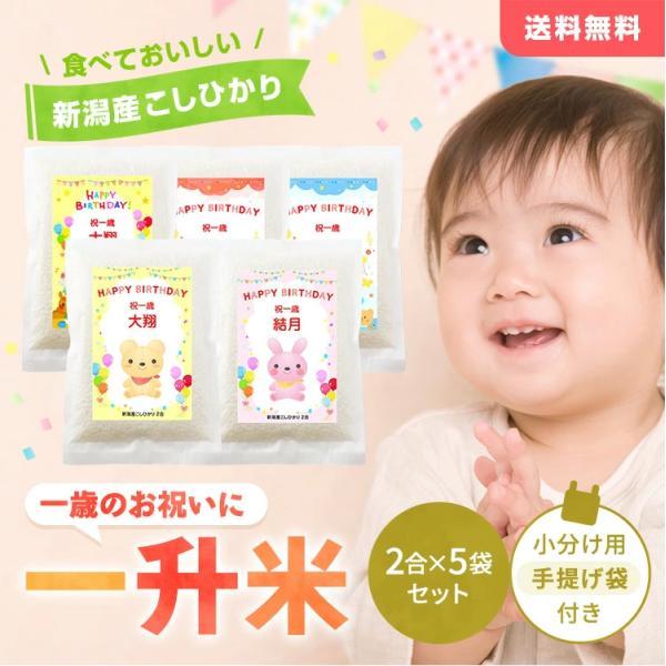 一歳 一升 餅 の代わり 米 誕生日 お祝い 新潟産コシヒカリ2合5個(300g*5個) 真空パック|echigo-komesho