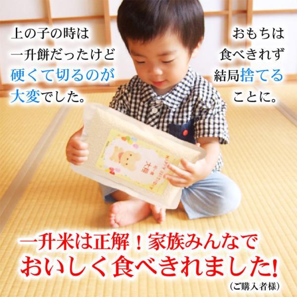 一歳 一升 餅 の代わり 米 誕生日 お祝い 新潟産コシヒカリ2合5個(300g*5個) 真空パック|echigo-komesho|04