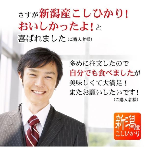 退職 お礼 プチギフト 新潟産コシヒカリ 2合パック(300g) お米 転勤 異動 挨拶 品|echigo-komesho|04