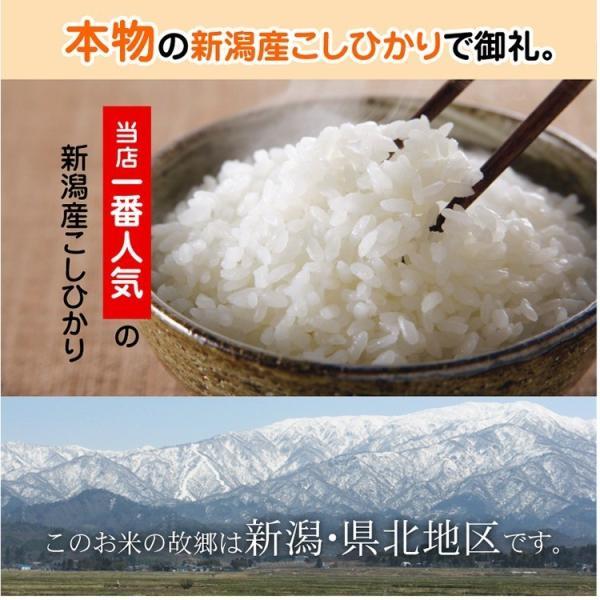 退職 お礼 プチギフト 新潟産コシヒカリ 2合パック(300g) お米 転勤 異動 挨拶 品|echigo-komesho|05