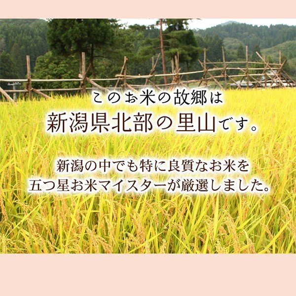 引越し 挨拶 ギフト 新潟産 コシヒカリ3合 粗品 米 真空パック 品物 挨拶品|echigo-komesho|08