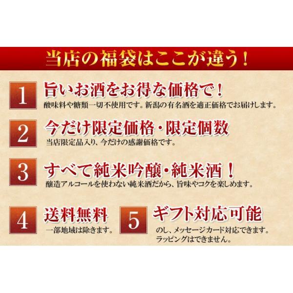 日本酒 飲み比べセット 越乃寒梅 灑入り 純米酒 純米吟醸 1.8L×5本 豪華版福袋|echigo|08