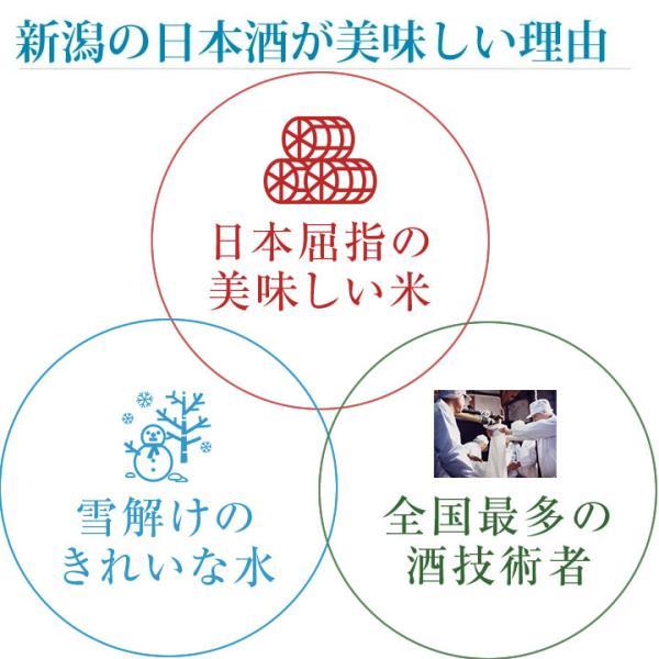 日本酒 飲み比べセット 越乃寒梅 灑入り 純米酒 純米吟醸 1.8L×5本 豪華版福袋|echigo|09