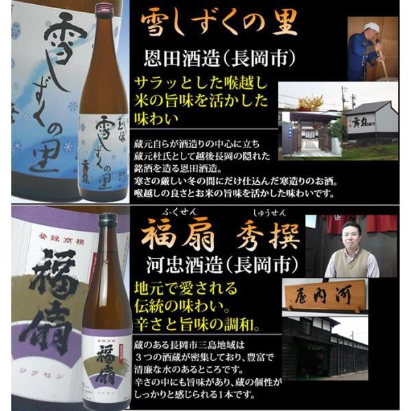 日本酒 飲み比べセット 純米吟醸入り720ml×6本(送料無料)|echigo|04