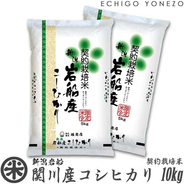 特別栽培米関川産コシヒカリ