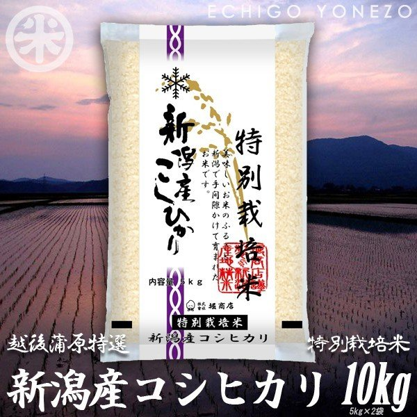 特別栽培米新潟産コシヒカリ