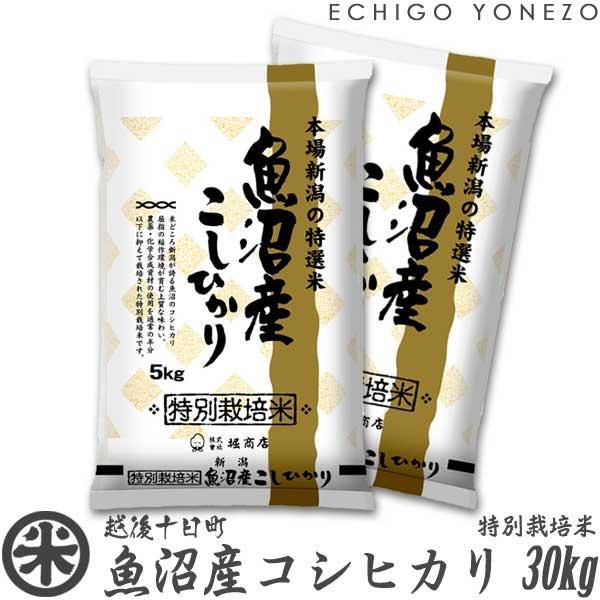 新米02 魚沼産コシヒカリ 特別栽培米 30kg 5kg×6袋 減農薬化学肥 新潟米 こしひかり 送料無料