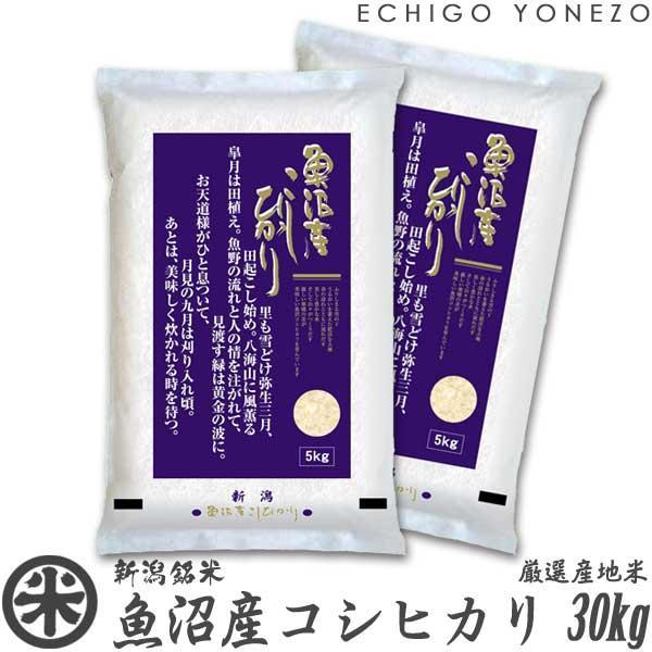 新米02 魚沼産コシヒカリ 30kg 5kg×6袋 新潟米 新潟県産 お米 こしひかり 送料無料