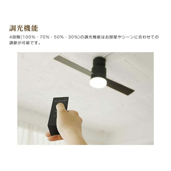 JAVALO ELF Modern Collection LEDシーリングファン 2 blades style インテリア 2ブレード 調光切替 eclity 04