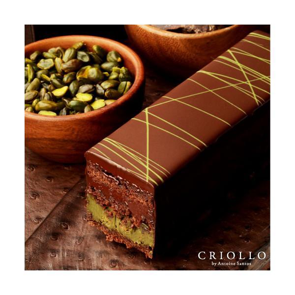 母の日2021トレゾー・ピスターシュ・プレミアムチョコレートケーキ 冷凍便
