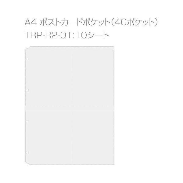 A4葉書ファイル[WOOD] アイボリー edc 04