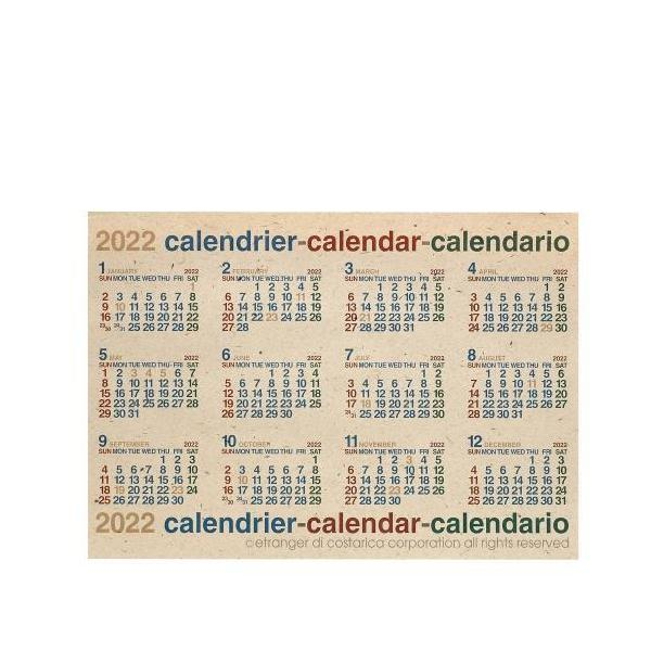 カレンダー ポスター B2 2020年 1月始まり ナチュラル 大判 シンプル 公式通販サイト|edc