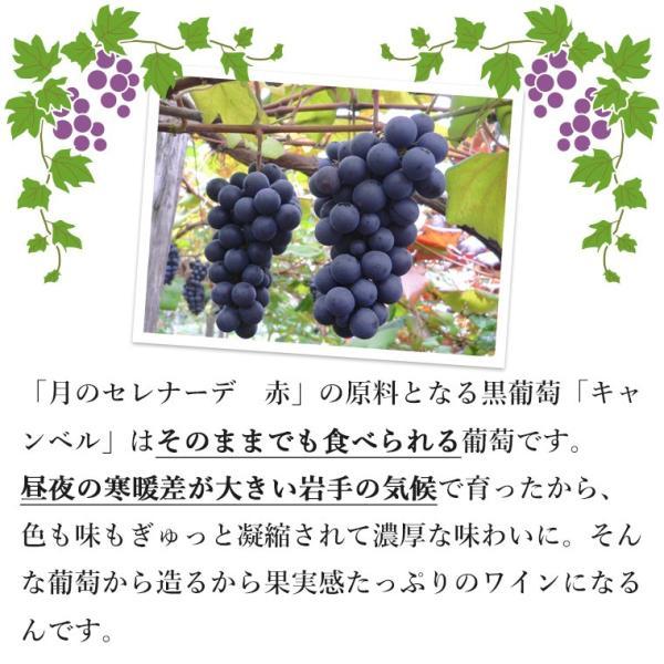 エーデルワイン 月のセレナーデ NEW 赤ワイン 甘口|edelwein|04