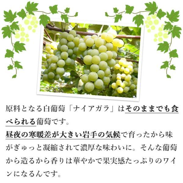 エーデルワイン 星の果樹園ナイアガラ 白 スパークリングワイン 辛口 edelwein 04