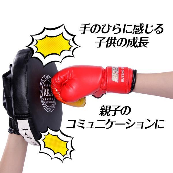 ボクシング セット ミット グローブ 親子 で 練習 トレーニング ストレス 解消|edunamay-shop2|03