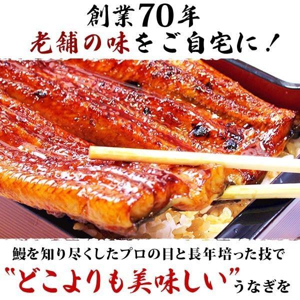 国産うなぎ通販 海産物 お祝い 鰻カット蒲焼3枚 Bset|eel-tanaka|05