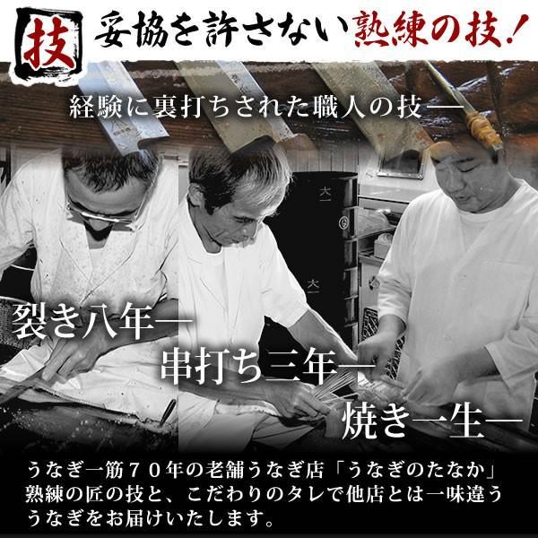 国産うなぎ通販 蒲焼き (訳あり ワケあり わけあり 不揃い ウナギ 鰻)わけありサイズ10枚|eel-tanaka|06