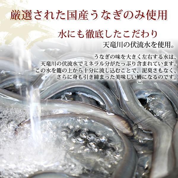 敬老の日ギフトランキング 国産うなぎ通販 蒲焼 (訳あり ワケあり わけあり 不揃い ウナギ 鰻)わけありサイズ|eel-tanaka|04