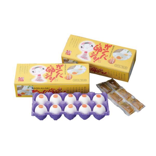 温泉たまご ガンバ卵ショ 2箱 (1箱10入×2箱)*