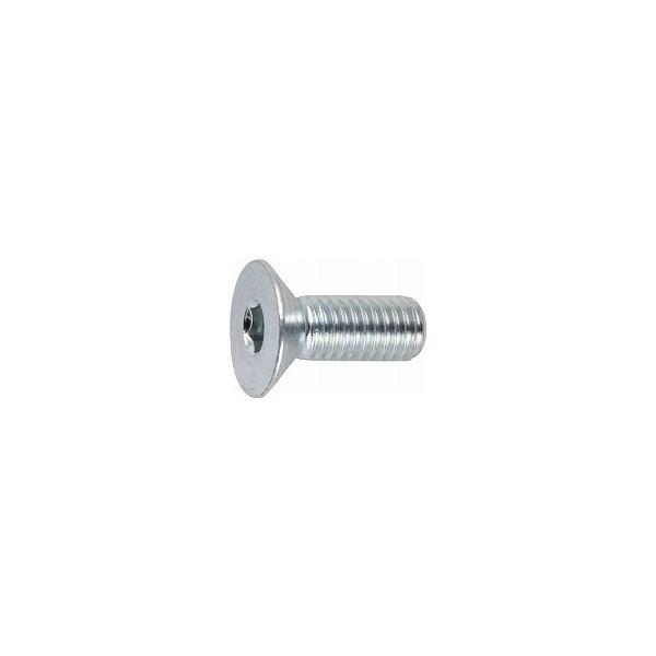 TRUSCO 六角穴付皿ボルト三価 白 サイズM5X12 25本入 B7730512