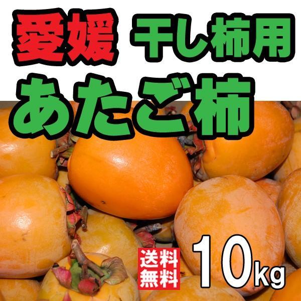 柿 あたご柿 横野柿 渋柿 干し柿 つるし柿用 愛媛産 10kg 送料無料
