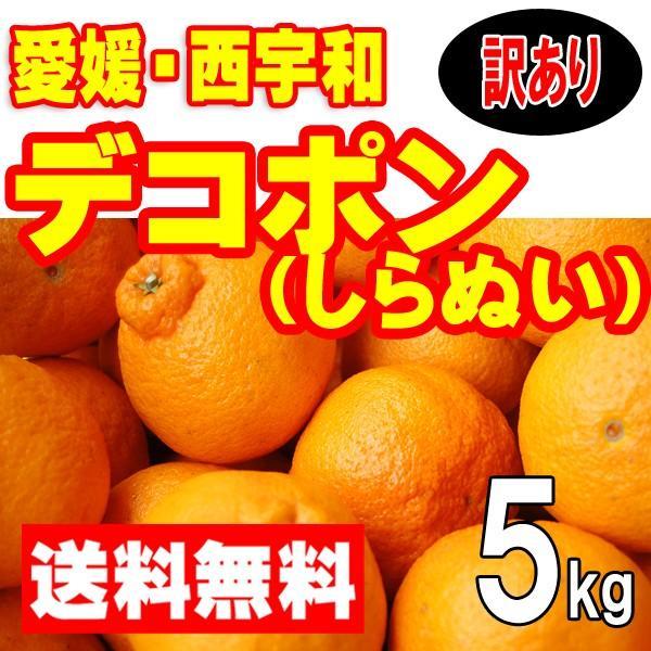 愛媛西宇和産 デコポン(しらぬひ) 訳あり家庭用 送料無料 5kg