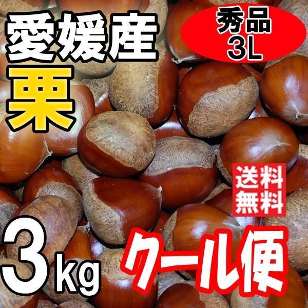 クール便 愛媛の栗 生栗 秀品 3Lサイズ 3kg 送料無料