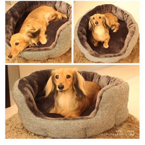 【大特価】ペットソファ ペットベット 犬ベッド ペットベッド ペットソファ ヘリンボーンラウンドソファ|eightdogs|05