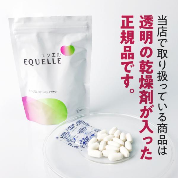 大塚製薬 エクエル パウチ 120粒 2袋 エクオール 大豆イソフラボン サプリ 2個 2個セット EQUELLE|eisin1|02
