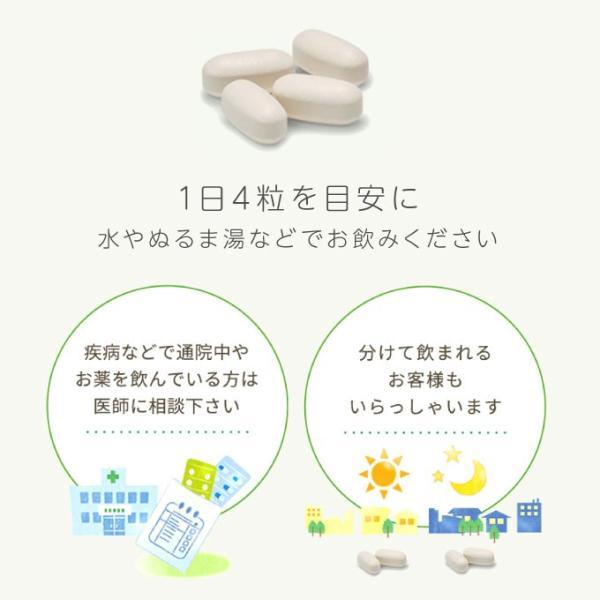 大塚製薬 エクエル パウチ 120粒 2袋 エクオール 大豆イソフラボン サプリ 2個 2個セット EQUELLE|eisin1|07