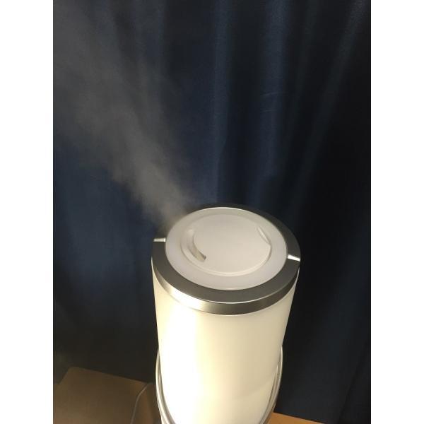 除菌 ・ 消臭 / 超微粒子噴霧器 ジアグリーン 次亜塩素酸水 (本体+タブレット(1.0g)10錠セット)|eizumiya|06