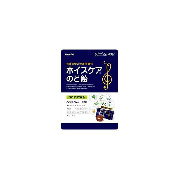 ★まとめ買い★ カンロ ボイスケアのど飴 ×6個【イージャパンモール】