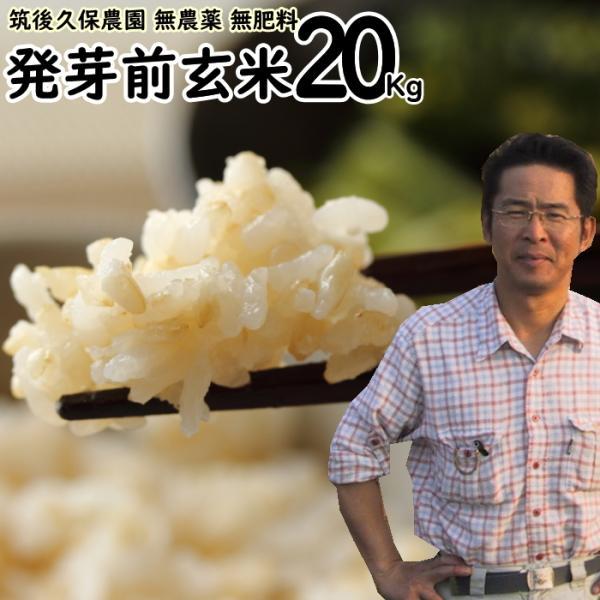 無農薬 無肥料 発芽前玄米20Kg   福岡県産 夢つくし 0.5分づき米 発芽玄米 筑後久保農園 自然栽培米