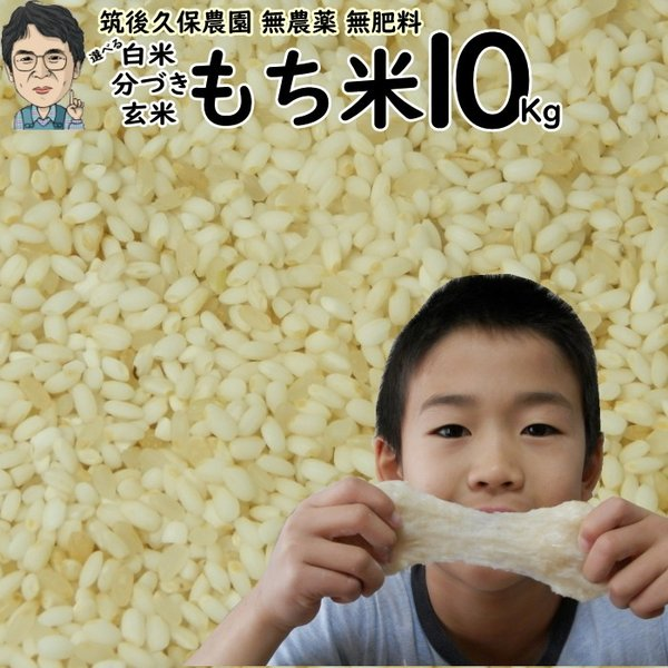 無農薬 無肥料 栽培米 もち米 10Kg | 福岡県産 ひよくもち 筑後久保農園 自然栽培米
