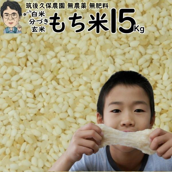 無農薬 無肥料 栽培米 もち米 15Kg   福岡県産 ひよくもち 筑後久保農園 自然栽培米