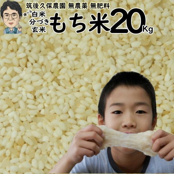 無農薬 無肥料 栽培米 もち米 20Kg   福岡県産 ひよくもち 筑後久保農園 自然栽培米