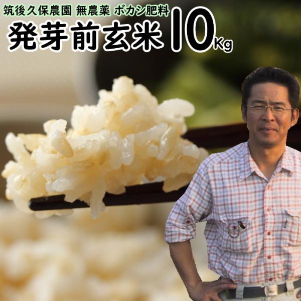 無農薬 ボカシ肥料 発芽前玄米 10Kg   福岡県産 元気つくし 0.5分づき米 自然栽培米