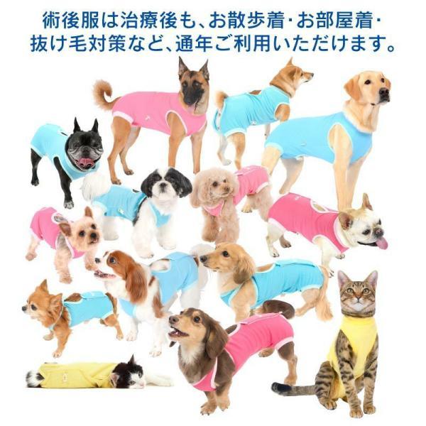 【送料込】エリザベスカラーの代わりになる 獣医師推奨 犬用術後服エリザベスウエアR 男の子 雄 ダックス 小型犬用 【ネコポス値2】|elizabethwear|11