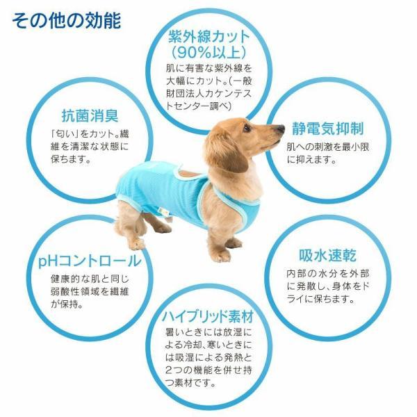 【送料込】エリザベスカラーの代わりになる 獣医師推奨 犬用術後服エリザベスウエアR 男の子 雄 ダックス 小型犬用 【ネコポス値2】|elizabethwear|09