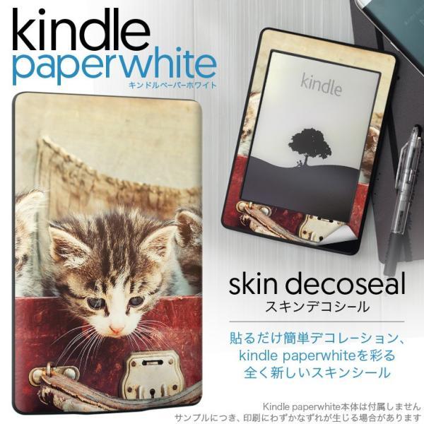 kindle paperwhite キンドル ペーパーホワイト タブレット 電子書籍 専用スキンシール 裏表2枚セット デコ 写真 猫 ネコ カバン 鞄