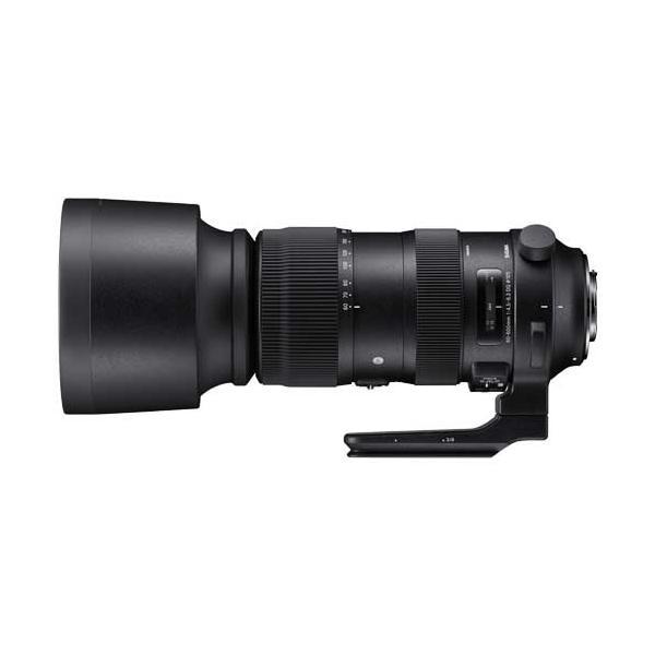 シグマ 60-600mm F4.5-6.3 DG OS HSM Sports キヤノン用 《納期約1ヶ月》